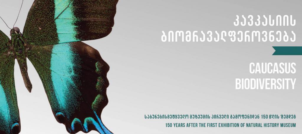 Выставка «Биоразнообразие Кавказа»